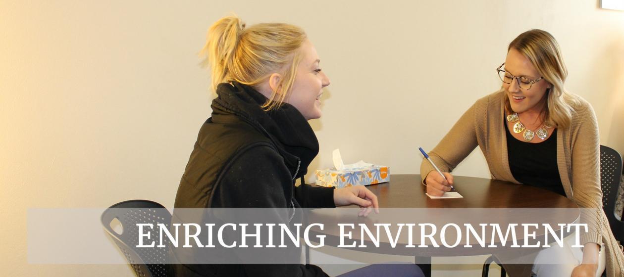 Enriching Environment